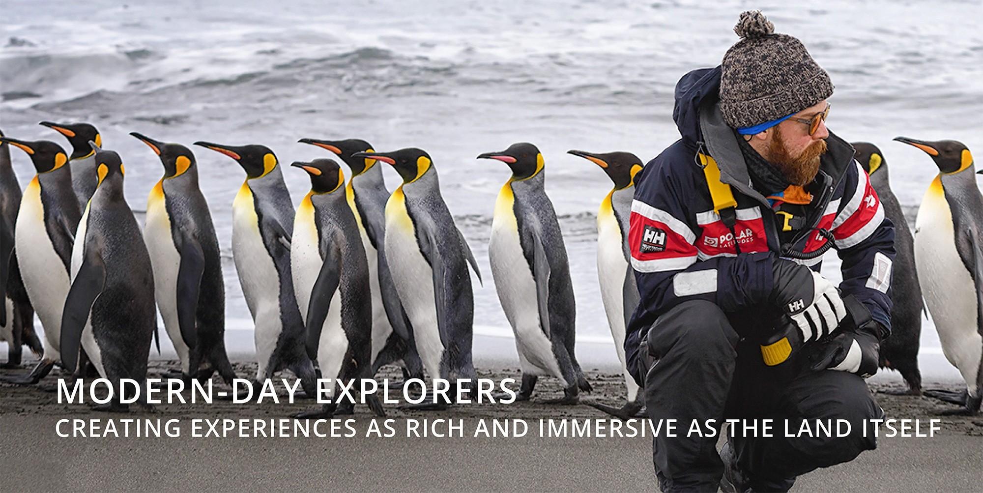 Polar Latitudes King Penguin Tourism